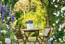 Gorgeous Gardens and Ideas / Showcasing some of the gorgeous gardens in accommodations around South Africa - browse and gather some gardening inspiration!