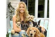 ✩ Chiens de star ✩ / Les chiens aussi ont droit à une vie de strass et paillettes... Grâce à leurs Humains célèbres, certains ont même droit de fouler les tapis rouges !