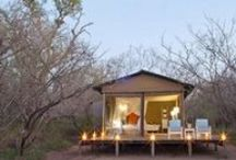 Glamping / Glamping is the quickly becoming the ultimate travel experience. Imagine visiting a remote island overlooking a tropical jungle in your 4-star treehouse appointed with the luxuries you would find at any high-end resort.