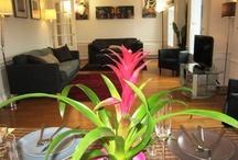 Paris Apartment / We love to travel. Travel is about discovery pleasure and joy..., www.evevillasparis.com