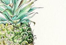 Ananas / loca por las piñas <3