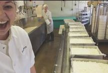 """Artisan Cheese Making / """"Behind the Scenes"""" of the artisan cheese making life."""
