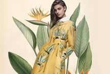 Illustrated Garden - SS16 trend forecast / SS 16 trend idea Botanical style, meadow garden flowers, stylised compositions, detailed illustrations of foliage, plants and flowers