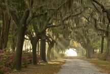 Southern living / Low country style