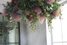 arrangement&bouquet / 季節の花々
