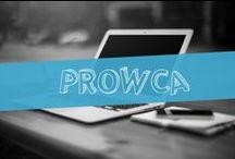 prOwca blog / http://prowca.wordpress.com