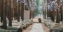 Outdoor Wedding Inspo / Ideas for the outdoor ceremony/reception