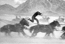 Yakima Canutt