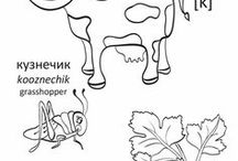 раскраски / album for coloring