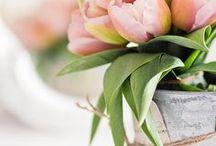 Капкейки и тюльпаны / Cupcakes & tulips / Easter Decorations