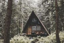 My Cabin in the Woods