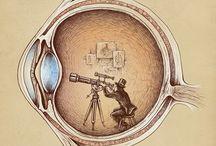 Ilustres Ilustraciones
