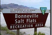Bonneville Salt Flats / by harleyte