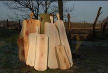 Metasequoia Watercypres Dawn Redwood / Mooie boom, mooi hout en bijzondere toepassingen. Meer informatie op www.knoest.eu.