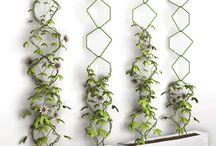 jardincitos :3