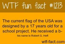 Amazing Facts!!!!!!!!! / by 〽øhï†