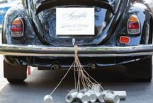 Calligraphen Wedding Car Decorations / Bildekorationer