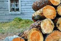 Firewood / Firewood - gather, carry and store