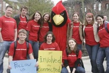 Illinois state university office of admissions on pinterest - University of illinois admissions office ...