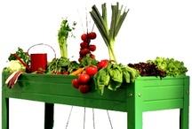 Complementos Jardinería