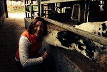 Animals <3 / by Cheryl Forberg - Chef Nutritionist Advisor