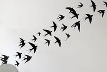 鸟birds
