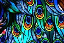 彩色玻璃stained glass