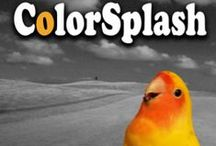 Splash of Color I like / by Roland Buck