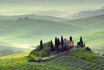 Countryside around Florence!! / by Hotel Duomo Firenze