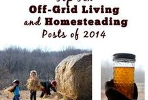 Homestead Life / Homesteading ideas: everything from kitchen to sustainable living, saving money, natural living. #natural #homestead #husbandry #hobby #farm #gardening