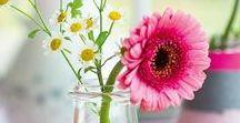 Basteln mit Blumen / Ihr liebt Blumen und der Frühling kann für euch gar nicht bunt genug sein? Dann bringt die Jahreszeit zum Strahlen und bastelt kunterbunte Blüten, Blumen selbst!