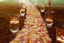 bride ♥