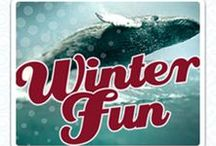 Winter Fun / Welcome to Virginia Beach where the Cool Seasons offer a glimpse of the region's natural gifts, and a rich palette of activities are sure to satisfy a variety of interests. You see, we're not just a summer season destination. When the weather gets a little cooler, so do we. / by Virginia Beach | Live the Life