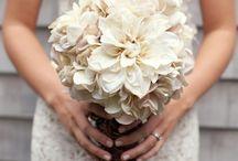 Wedding bliss!!!  / by Megan Malioris