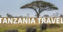 Tanzania travel / Be inspired to travel to Tanzania in East Africa to experience its heritage and wildlife, its landscapes, beaches and people. Explore places like Dar es Salaam, for on safari in the Ngorongoro crater and see Big Cats and the great wildebeest migration in the Serengeti.