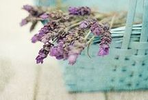 kwiaty - dekoracje