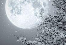 Winter Wonderland ❄️⛄️