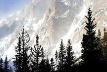 Mountains / by Teresa Franco