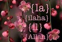 ALLAHالله-♥-HUالله-♥KURAN-I KERİM.♥....