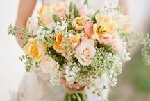 { Wedding  Flowers } / From roses to lillies, gerberas to tulips, natives and tropical - we hope you get some ideas here for your bridal bouquets