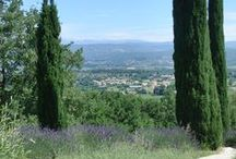 Lieblingsplätze:Frankreich - Provence- Liberont / Bilder aus Frankreich: Provence