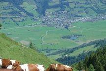 """Lieblingsplätze: """"meine Alpen"""" / Bilder aus den Alpen: Bayern-Österreich und Schweiz"""