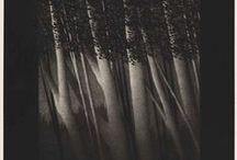 Robert Kipniss / by Harold Pinterest