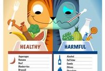 Cats Facts / All facts about cats: moods, interaction, food, meowing...