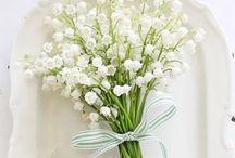 flowers i love !