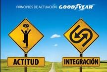 Identidad Corporativa/Branding / Gestión de marca, desarrollo de identidad corporativa y estrategia de branding.