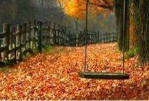 Fall & a gratefull heart