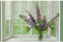 She Graces Her Home In God's Beauty /   Where you will find rich blessings from God's Word www.shegracesherhomeingodsbeauty.com