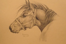 My Art / Original Horse Drawings