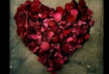 in love / by Gema